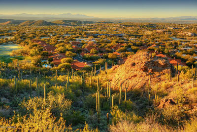 Tucson Residential Lots & Land For Sale: 6412 N Desert Wind Circle