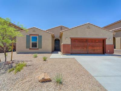 Oro Valley Single Family Home For Sale: 11125 N Hydrus Avenue