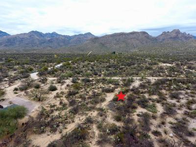 Residential Lots & Land For Sale: 5061 N Bear Canyon Road
