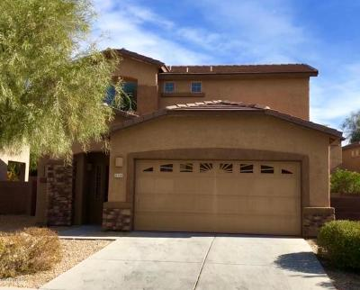 Tucson Single Family Home For Sale: 8368 N Johnson Drive
