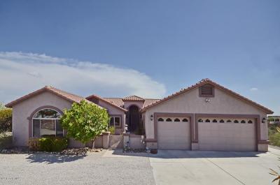 Single Family Home For Sale: 10490 E Sky High Drive