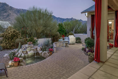 Tucson Single Family Home For Sale: 15730 N Roadrunner Ridge Lane