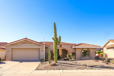 Oro Valley Single Family Home For Sale: 14735 N Palmwood Drive