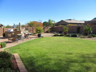 Marana Single Family Home For Sale: 12306 N Pathfinder Drive