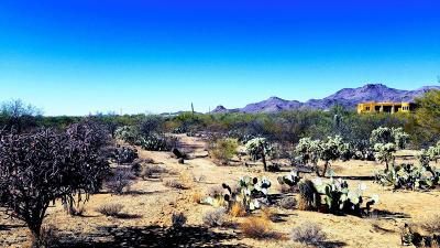 Tucson Residential Lots & Land For Sale: W Moore Road