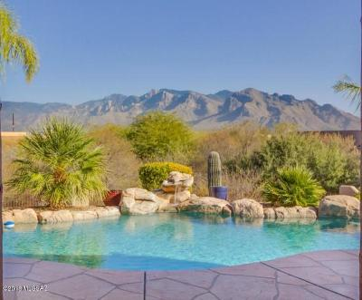 Oro Valley Single Family Home For Sale: 10374 N Wild Creek Drive