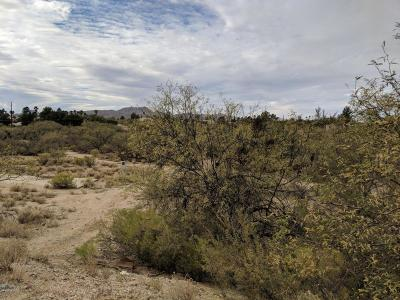 Tucson Residential Lots & Land For Sale: 3401 E Hawser Street #41
