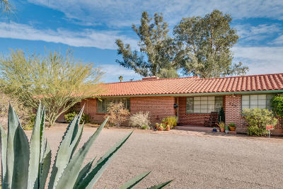 Single Family Home For Sale: 325 S Calle De Madrid