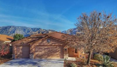 Oro Valley Single Family Home Active Contingent: 13424 N Wide View Drive