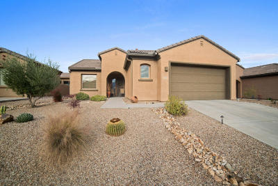 Green Valley Single Family Home For Sale: 5980 S Painted Canyon Drive
