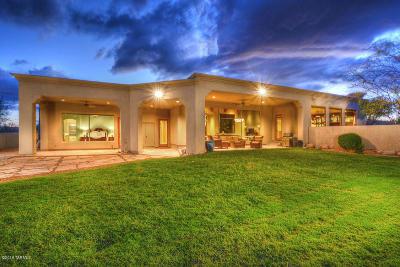 Single Family Home For Sale: 2301 E Ancient Mesa Lane