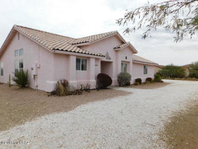 Vail Single Family Home For Sale: 2901 E Wetstones Road
