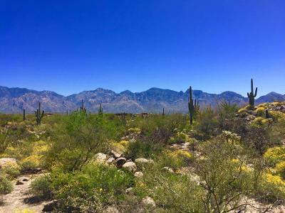 Tucson Residential Lots & Land For Sale: 1893 W Tortolita Mountain Ci Circle W #598