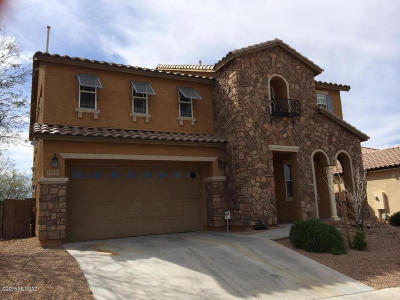 Vail Single Family Home For Sale: 17100 S Painted Vistas Way