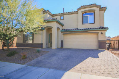 Marana Single Family Home For Sale: 8751 W Saguaro Moon Road