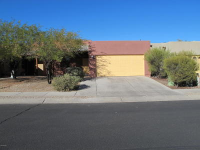 Tucson Single Family Home For Sale: 876 W Placita Estrella Azul