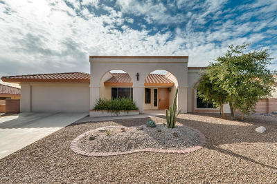 Oro Valley Single Family Home Active Contingent: 14625 N Chalk Creek Dr