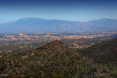 Tucson Residential Lots & Land For Sale: 6435 W Lost Canyon Drive #.