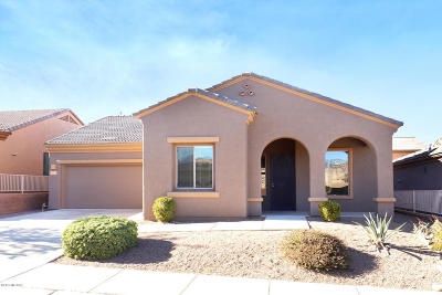 Single Family Home For Sale: 5870 S Painted Canyon Drive