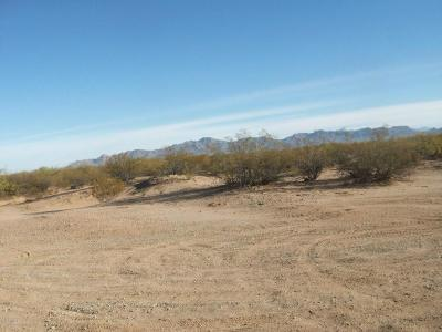 Tucson Residential Lots & Land For Sale: 13180 W Snyder Hill Road