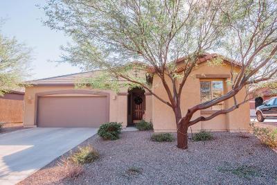 Tucson Single Family Home For Sale: 8485 N Mountain Stone Pine Way