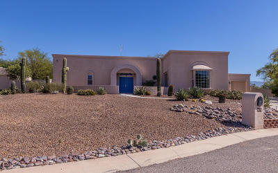 Tucson Single Family Home For Sale: 9873 E Veryl Place