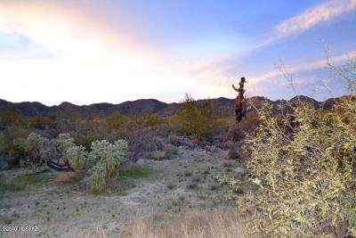Stone Canyon I Residential Lots & Land For Sale: 1192 W Tortolita Mountain Circle