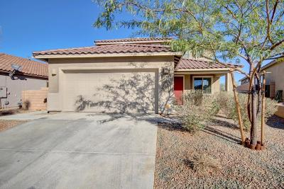 Single Family Home For Sale: 7263 S Valley Stream Drive