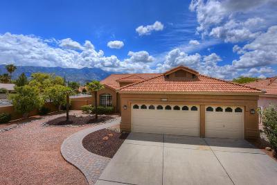 Tucson Single Family Home For Sale: 64261 E Echo Canyon Court
