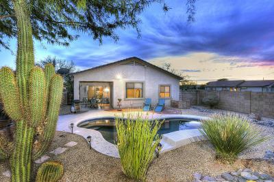 Marana Single Family Home For Sale: 5490 W Dove Mountain Park Road