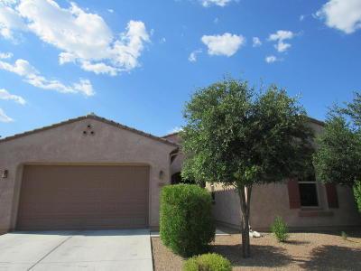 Sahuarita Single Family Home For Sale: 692 W Camino Tunera