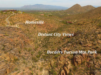 Tucson Residential Lots & Land For Sale: 5151 W Gates Pass Road