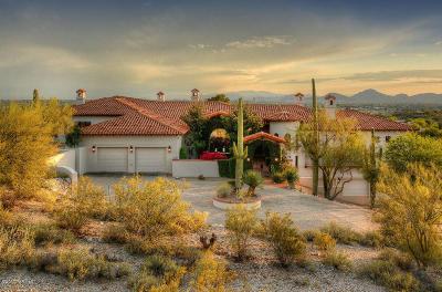 Tucson Single Family Home For Sale: 3540 E Calle Puerta De Acero