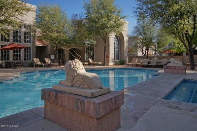 Tucson Condo Active Contingent: 1500 E Pusch Wilderness Drive #15102