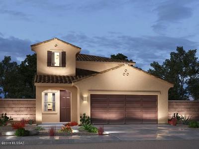 Sahuarita Single Family Home For Sale: 656 N Highlands Grove Lane