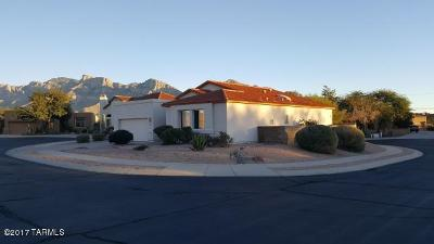 Oro Valley Single Family Home For Sale: 513 Apex Court