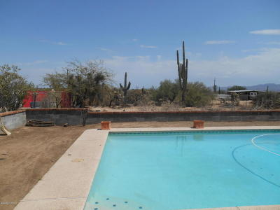 Tucson Single Family Home For Sale: 3801 W Lambert Lane