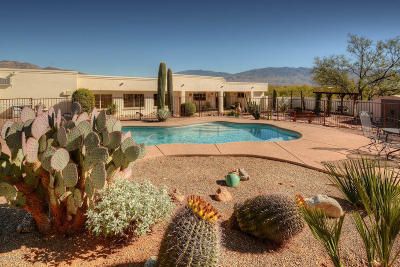 Tucson Single Family Home For Sale: 3001 N Sourdough Place