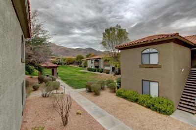 Tucson Condo For Sale: 5751 N Kolb Road #42202