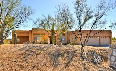 Tucson Single Family Home For Sale: 4701 S Placita Dos Pajaritos
