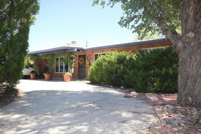 Single Family Home For Sale: 309 S Tucson Boulevard