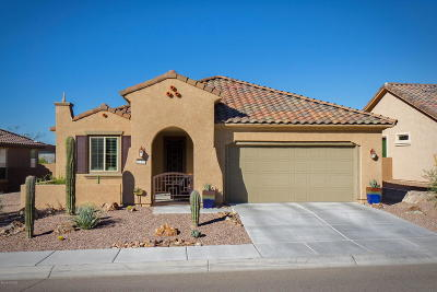Marana Single Family Home For Sale: 14195 N Lava Falls Trail