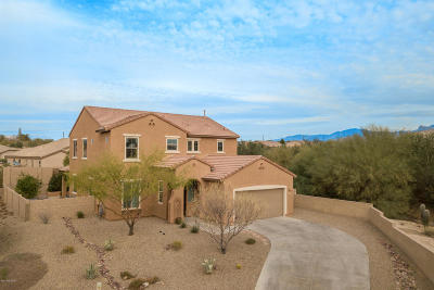 Tucson Single Family Home For Sale: 5192 W Willow Leaf Place