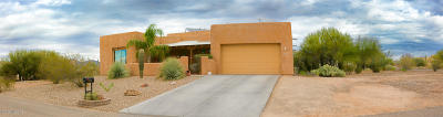 Single Family Home For Sale: 3951 S Tree Frog Place