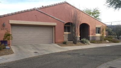 Single Family Home For Sale: 4092 N Star Park Place