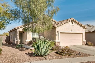 Sahuarita Single Family Home For Sale: 1334 W Via Cerro Colorado