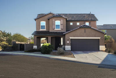 Tucson Single Family Home For Sale: 8298 N Morning Willow Court