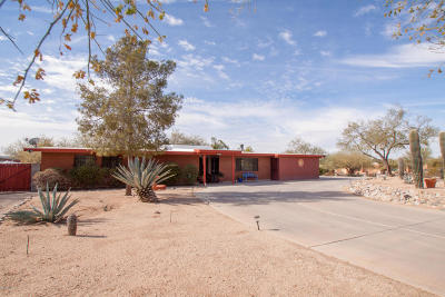 Tucson Single Family Home For Sale: 2655 W Dante Way