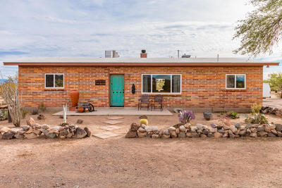 Tucson Single Family Home For Sale: 17620 W Whitfield Way
