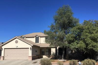 Tucson Single Family Home For Sale: 5096 W Condor Drive